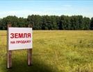 Под строительство жилья в Петербурге выставят на продажу участок